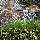 The bike is nice by sharon wingard