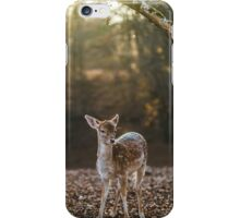 Small Deer in its habitat Phone Case iPhone Case/Skin