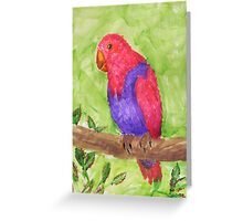 Red and Purple Tropical Parrot Greeting Card