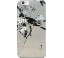 Watanabe Seitei Bird on a Flowering Branch iPhone Case/Skin