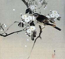 Watanabe Seitei Bird on a Flowering Branch by pdgraphics