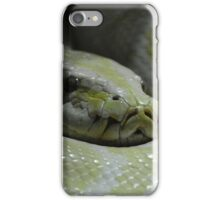Yellow & White Python  iPhone Case/Skin