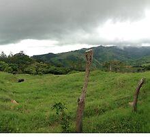 Costa Rican Countryside by peepsandwich
