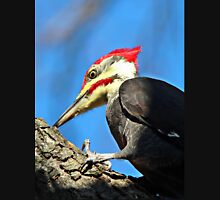 Pileated Woodpecker Closeup Unisex T-Shirt