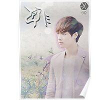 EXO - Lay Healing Poster