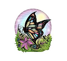 Butterfly Serenity Photographic Print