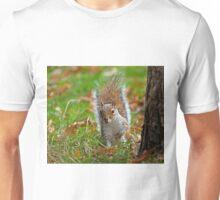 Grey Squirrel Peeping Unisex T-Shirt