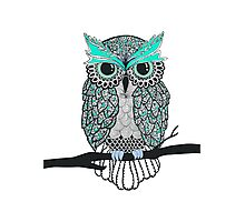 Green Owl Photographic Print