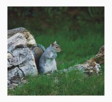 Grey Squirrel on Log Pile One Piece - Short Sleeve