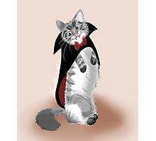 Vampire Cat Photographic Print