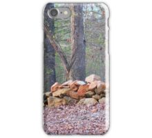 Rock fence iPhone Case/Skin