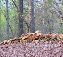 Rock fence by Rosie Brown