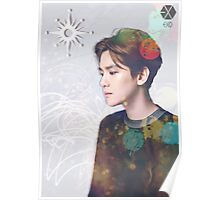EXO - Baekhyun Light Poster