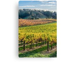 Grape Expectations  - Vertical Canvas Print