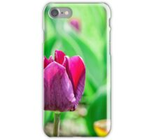 Purple Buds Of Tulips iPhone Case/Skin