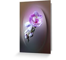 pink freesia flower Greeting Card