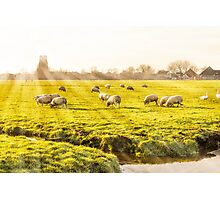 Rural landscape in Holland Photographic Print