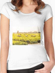 Rural landscape in Holland Women's Fitted Scoop T-Shirt