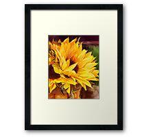 Sunny Day Sunflower Framed Print