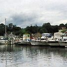 Boats On A Cloudy Day Essex CT by Susan Savad