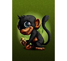 Cute Monkey eating banana Photographic Print