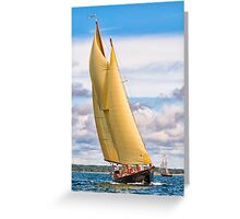 Catching The Wind Greeting Card