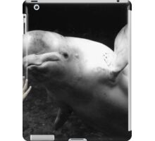 Two Worlds Reach Out iPad Case/Skin