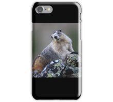 Alaska Marmot Portrait iPhone Case/Skin
