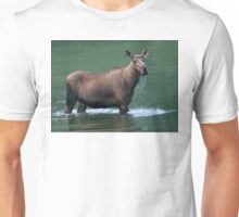 Moose & Emerald Pool Unisex T-Shirt