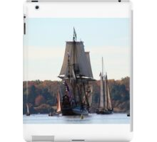 On the Chester River iPad Case/Skin