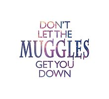 Don't Let the Muggles Get You Down by SamanthaBee