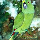 Cydney Yellow Naped Parrot by Brenda Thour