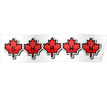Shawn Mendes - Canadian leaves Poster