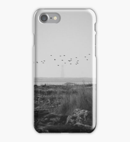 Cape Sable Birds iPhone Case/Skin