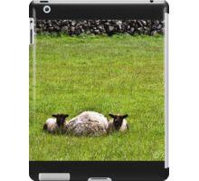 3 SHEEP OF IRELAND iPad Case/Skin
