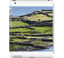 HORSE FENCE IN IRELAND iPad Case/Skin