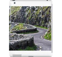 ROADS OF IRELAND iPad Case/Skin