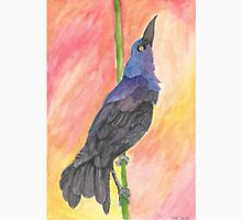Great-Tailed Grackle Classic T-Shirt