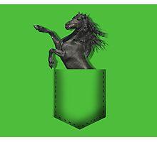 Black horse pocket Photographic Print