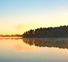 Sweden - Morning at the Virserum lake by leobrix