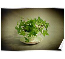 Tea Cup Ivy Poster
