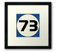 73 Sheldon's Favorite Number science physics geek Framed Print