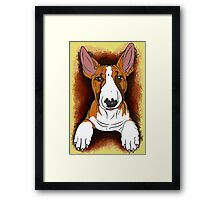 Tricolour English Bull Terrier  Framed Print