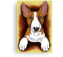Tricolour English Bull Terrier  Canvas Print