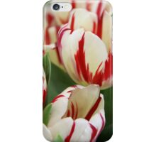 White and Red Tulips iPhone Case/Skin