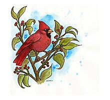Northern Cardinal Watercolor Photographic Print