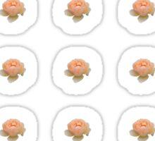 Apricot Rose 2 Sticker