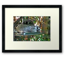 """No Good Sir, I will not """"Move it, Move it"""" Framed Print"""