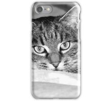 By A Whisker iPhone Case/Skin