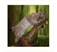 The Lynx and a Butterfly Art Print
